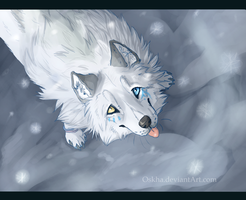 Snow by Oskha
