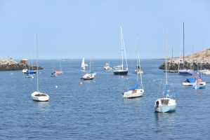 Ocean Cove, Boats Docked by Miss-Tbones