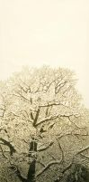 Devotional by mouse2cat