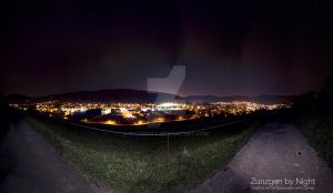 Night Panorama by D1versity