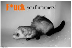 F_ck you furfarmers by Muoviankka