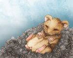 Hamster heaven by Ruth-Tay