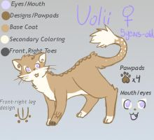 Volii Reference Sheet by Little-Volii
