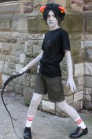 Let it Whip by recrdchaos