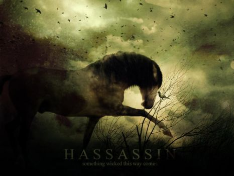 MY HASSASSIN by static007