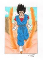 Vegeto's rage by nial09