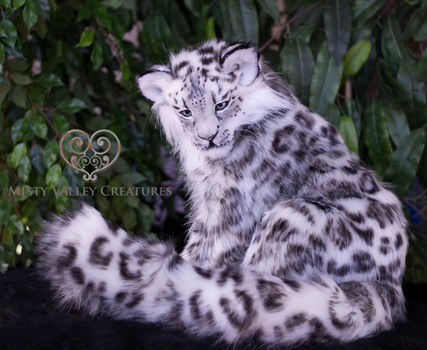 Lifesize Young Snow Leopard Artdoll by MistyValleyCreatures
