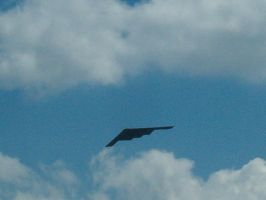 B2 Stealth Bomber by Liberate-my-Madness