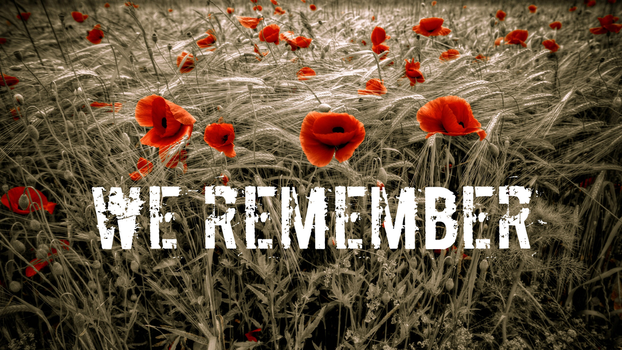We Remember by SERDD