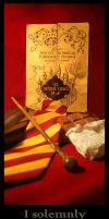 What I am - Remus Lupin Bookmark by Theriza