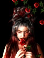 Red Roses by Shox00