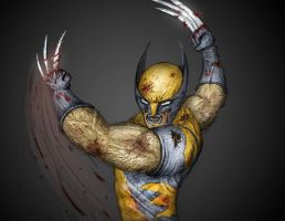 Wolverine by Evil1991
