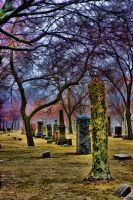 cemetery test 6 by lightzone