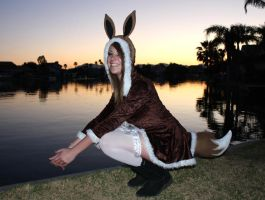 Eevee Cosplay 6 by norrit07