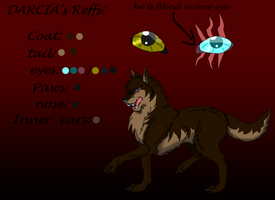 Darcia's Reference by My-Inner-Demon-676