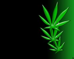marijuana wallpaper by luckystar-designs