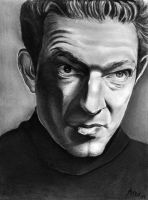 Vincent Cassell by qshera