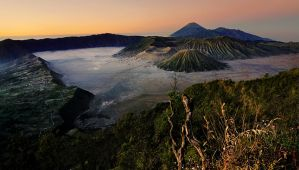 bromo I'm in Love by hirza