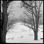 Cold sentinal - Feb 2011 by pearwood