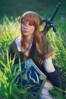 The Legend of Zelda - 04 - Hyrule Fields by beethy