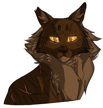 Tigerstar - 100 WCC by dreamieekek