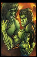 Lou as the Incrdibale Hulk by sanjun