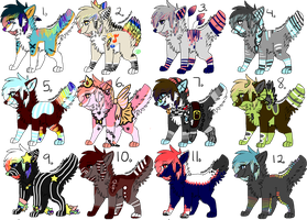 Have Some Scenedogs..:6/12 OPEN::.. by love-the-adopts