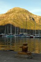 Hout Bay Gold by parallel-pam