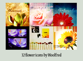 32 Flower icons by Woolfred