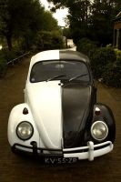 my '67 beetle by JackBrace