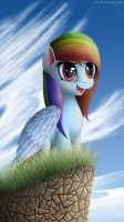 Rainbow Dash by michellka