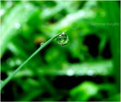 Water of life by Summer-Begins