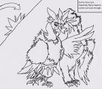 Braviary and vulture pokemon by howtobeast101