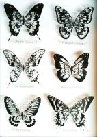 papercutting:six butterflies by masamisato