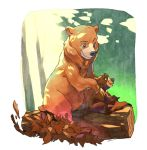brother bear by Umintsu