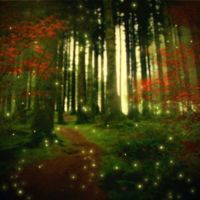 Premade Background Forest with Wisps by dreams2media