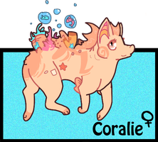 Coralie Reff by Provable