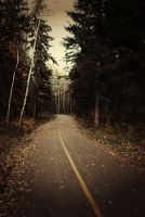 The Path Less Taken by laurenmcmurray