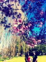 Spill of Blooms by CaityJayPictures