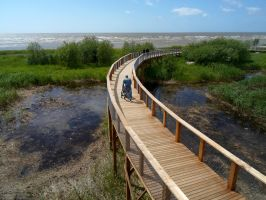 Parnu seaside 76 by MASYON