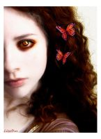 Summer Overture by litetbus