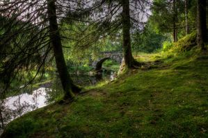 Creek bank by Enigmaticus