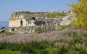 the theater of Miletus by Sockrattes