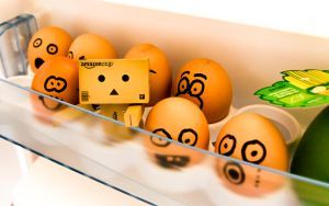 danbo in the fridge by InV4d3r