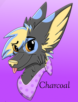 Charcoal headshot by XNeonFeather
