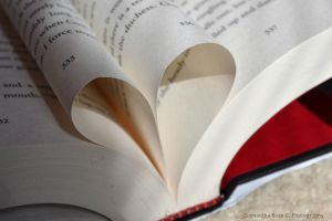 heart made out of pages by SamanthaRoseCPhoto