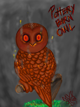 KOL: Pottery Barn Owl by myu2k2