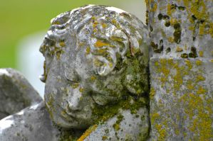 One more from a WV Cemetery by lampguru