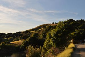 Up on the Hill by Amoryl