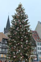 Christmas tree Stock 02 by Malleni-Stock